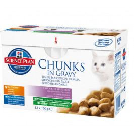 Hill's Feline Kitten Chicken & Ocean Fish 12 x 85 g