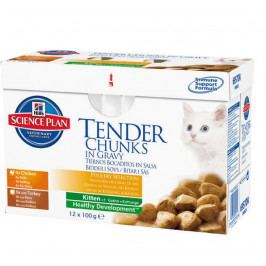 Hill's Feline Kitten Chicken & Turkey 12 x 85 g