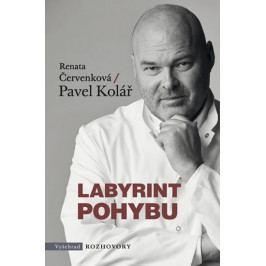 Produkt Červenková Renata, Kolář Pavel,: Labyrint pohybu Zdraví, medicína