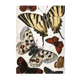 Utěrka na nádobí Jay Biologica Butterflies