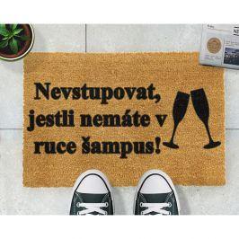 Rohožka z přírodního kokosového vlákna Artsy Doormats Šampus,40x60cm