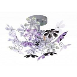 Flower R20012017