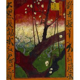 Flowering Plum Orchard