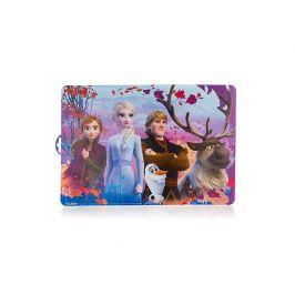 Produkt Prostírání plastové FROZEN 2, 43 x 29 cm Bytový textil, koberce