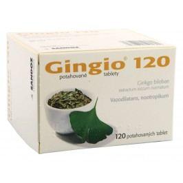 GINGIO 120 120MG potahované tablety 120