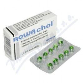 ROWACHOL enterosolventní měkké tobolky 20