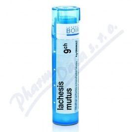 LACHESIS MUTUS 9CH granule 4G