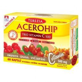 TEREZIA Acerohip Trio Vitamin C 500 cps.60