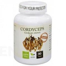 Natural Medicaments Cordyceps PREMIUM cps.90