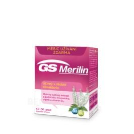 GS Merilin tbl.60+30 2017